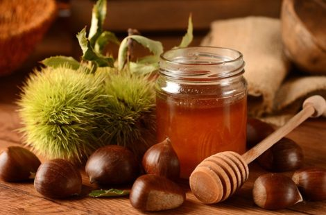 Properties and Benefits of Chestnut Honey